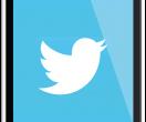 Il social network Twitter
