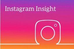 Dati statistici instagram: cosa ci dicono?