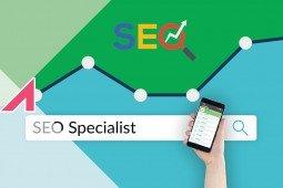 Seo Specialist: cosa fa e come diventarlo